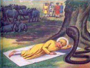 Guru Nanak and the Snake